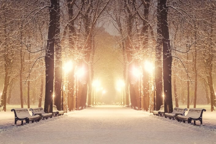 winter date ideas-park