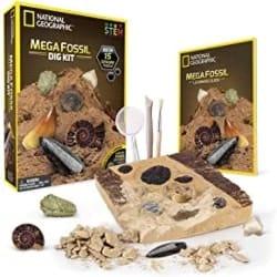 Cheap Birthday Gift Ideas - Mega Fossil Dig Kit