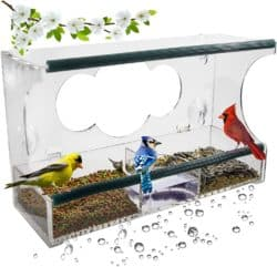 Unique but Thoughtful Gifts For Men Who Have Everything - Window Bird Feeder