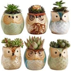 cheap gifts - Owl Pot Ceramic