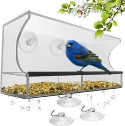 cheap gifts - Window Bird Feeder with Strong Suction Cups and Seed Tray