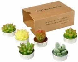 cute gifts - Cactus Tealight Candles