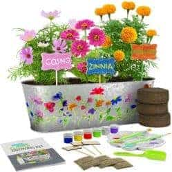 cute gifts - Paint & Plant Flower Growing Kit