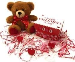 Teddy Bear Plush in a Gift Box & Cut Crimped Paper Shreds