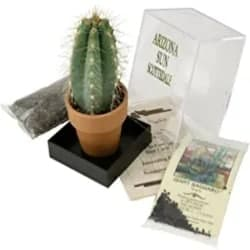 DIY Gifts for Men Who Have Everything - Grow Your own Saguaro Cactus Kit
