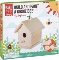 DIY gifts - Beetle & Bee Build & Paint A Birdie B&B