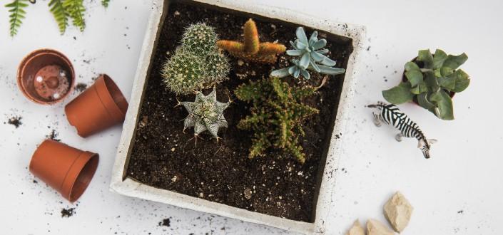 DIY gifts - Cool DIY Gifts