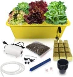 DIY gifts - Hydroponics Growing System