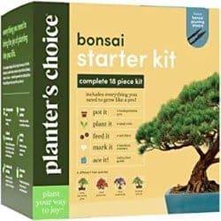 Thoughtful DIY Gifts for Men - Bonsai Starter Kit