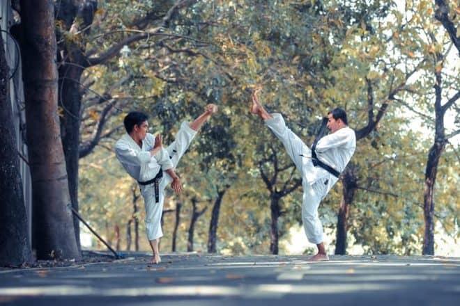 best martial arts - post.jpg
