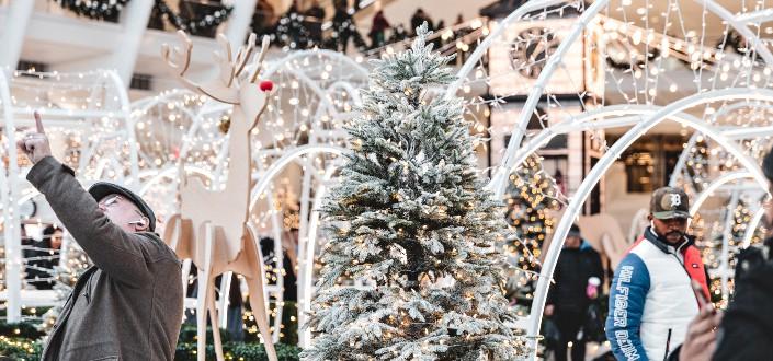 Fun Trivia Questions - Fun Christmas Trivia Questions
