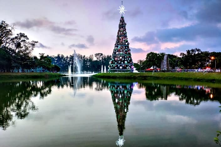 Fun Trivia Questions - How tall is the tallest Christmas tree