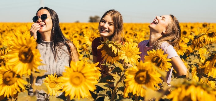 Three girls having fun on sunflower fields