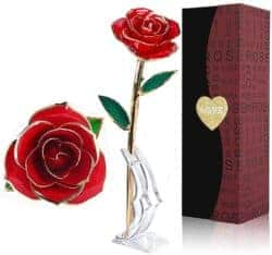 Birthday Gift Ideas For Girlfriend That Can Be For Valentine's - Gold Dipped Rose