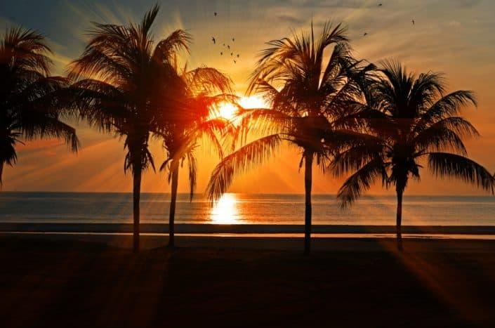Go to the Beach.jpg