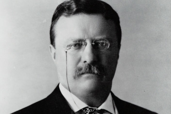 In the movie 'The Wind And The Lion' who played the part of Theodore Roosevelt_