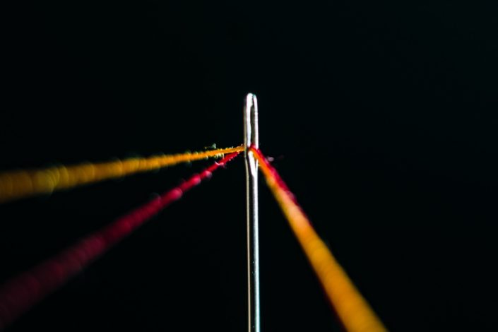 It is easier for this animal to go through the eye of a needle than for a rich man to enter the kingdom of God:.jpg