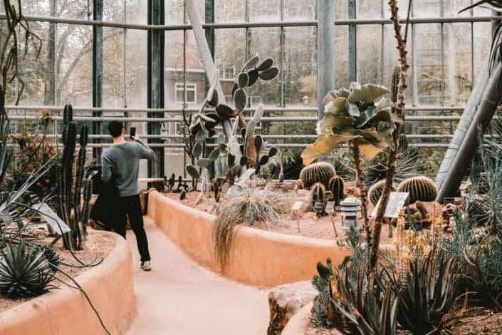 Anniversary date ideas - Visit a botanical garden