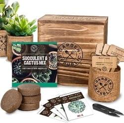 Cactus Succulent Seed Starter Kit (1)
