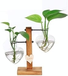 Creative Heart Glass Hydroponic Vases (1)