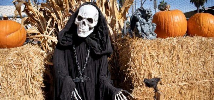 horror movie trivia - Halloween horror movie trivia