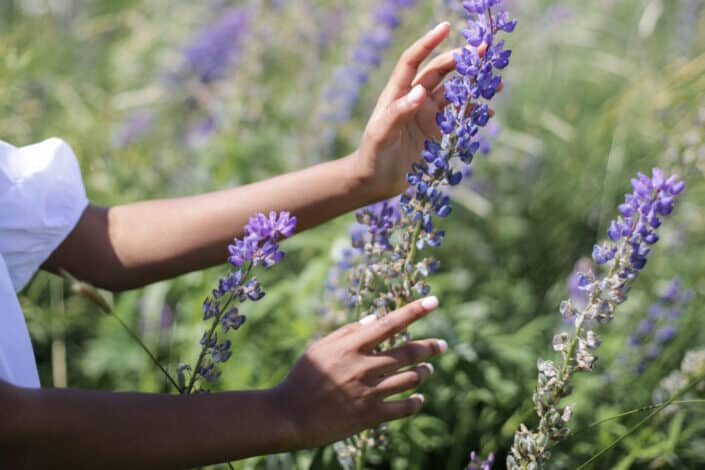 Hand holding purple flowers