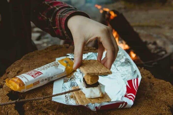making smores on top of a log with a small fire burning near