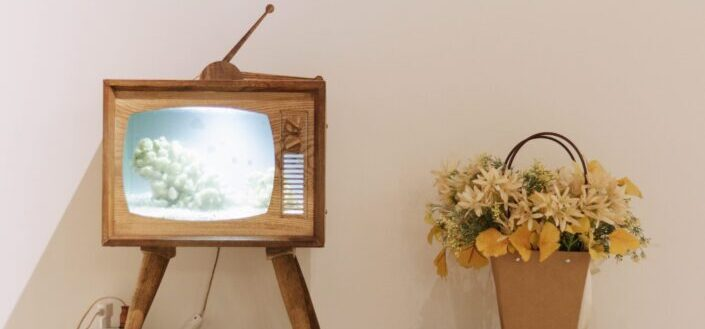 Old TV set with flowers on the side.