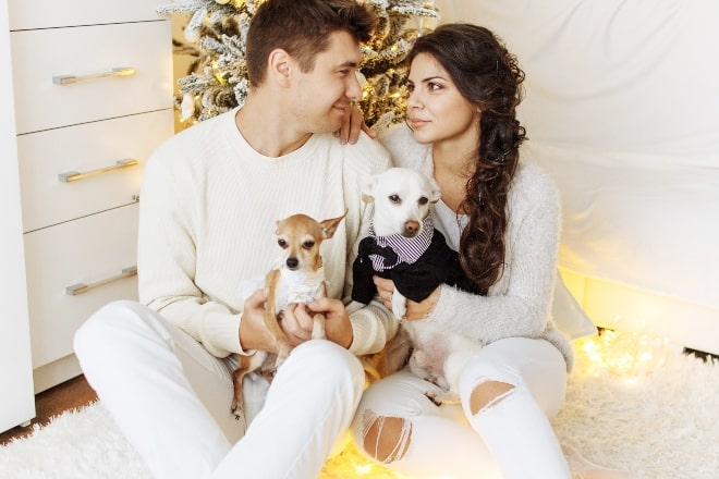 couple looking at each other while holding puppies - christmas pick up lines