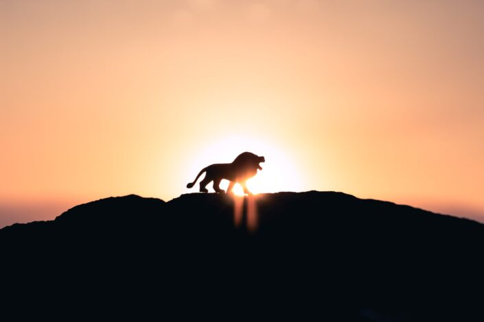 Lion's silhouette on top of a mountain.