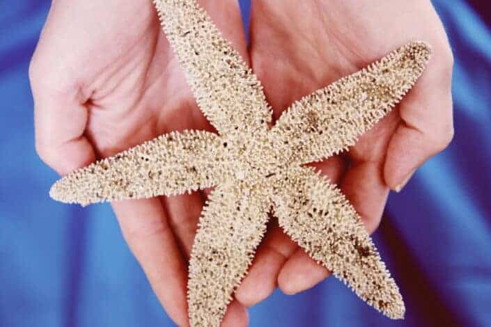 Woman with starfish on her palms