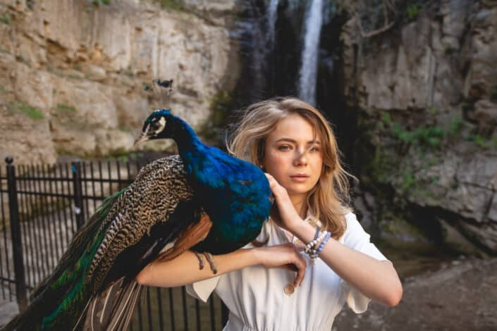 peacock on a shoulder of a woman