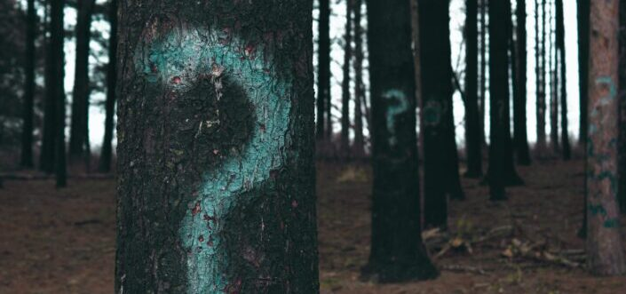 Question marks painted on trees.