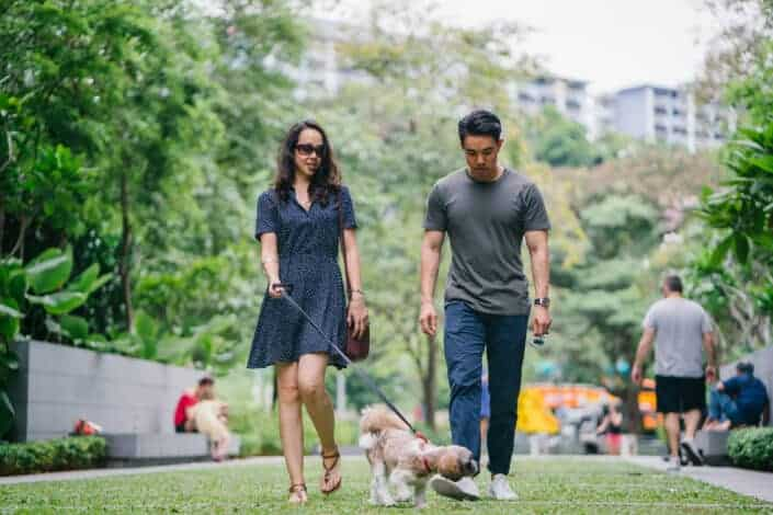 Man and woman walking their dog
