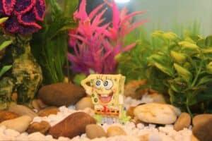 spongebob trivia - featured