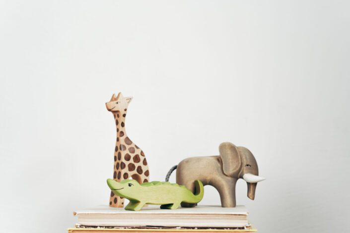 Wooden Toys on Books
